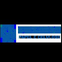 Suzano - Papel e Celulose - Clientes